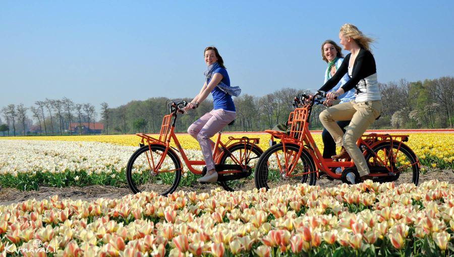 آب و هوای هلند