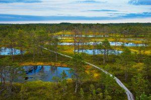 بازدید از پارک ملی استونی
