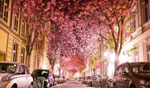 آب و هوای آلمان در بهار